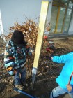 GardenProject (63)