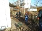 GardenProject (68)